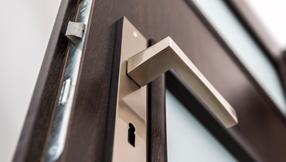 Aluminium, Holz Haustüren